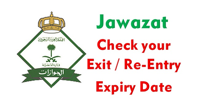 How To Check Your Exit Re Entry Status Online Times Of Ksa